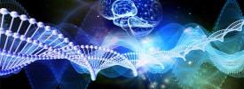 Proyecto Ciencia en Familia