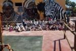 Edcucación Infantil visita Terra Natura en Espinardo