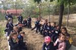 Excursión de 2.º de Infantil a la granja Los Limoneros