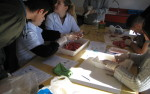 Prácticas de Biología con alumnos de bachillerato
